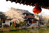 西塘-迷人的小镇